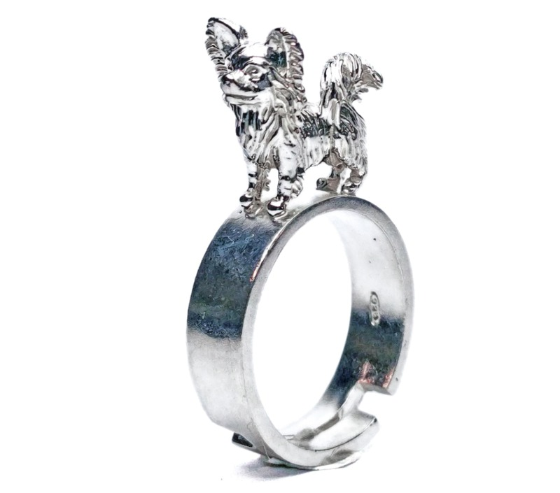 chihuahua-long-coat-ring