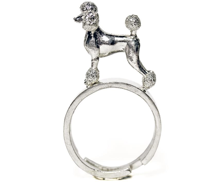 barboncino-anello