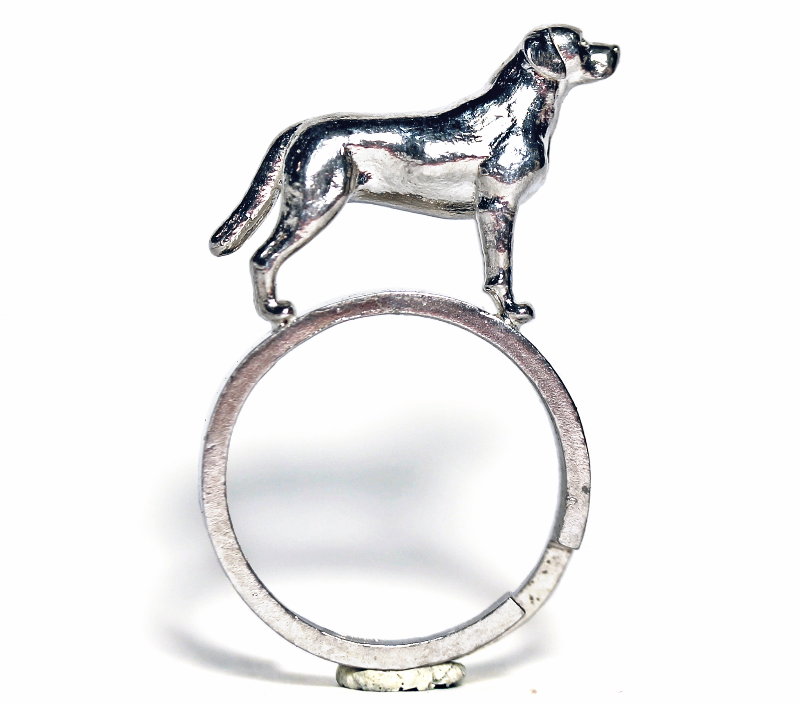 labrador-anello