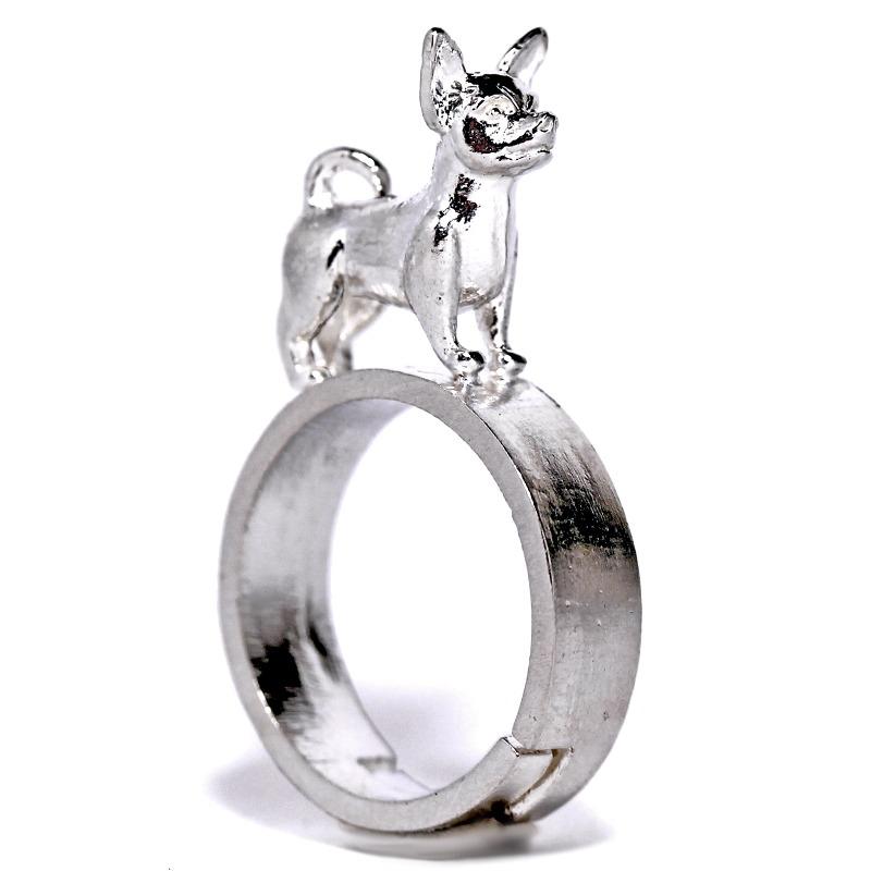 chihuahua-anello