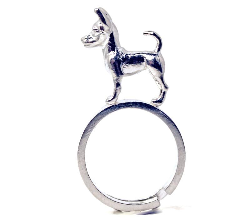 pinscher-nano-anello