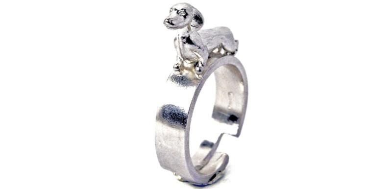 dachshund-ring
