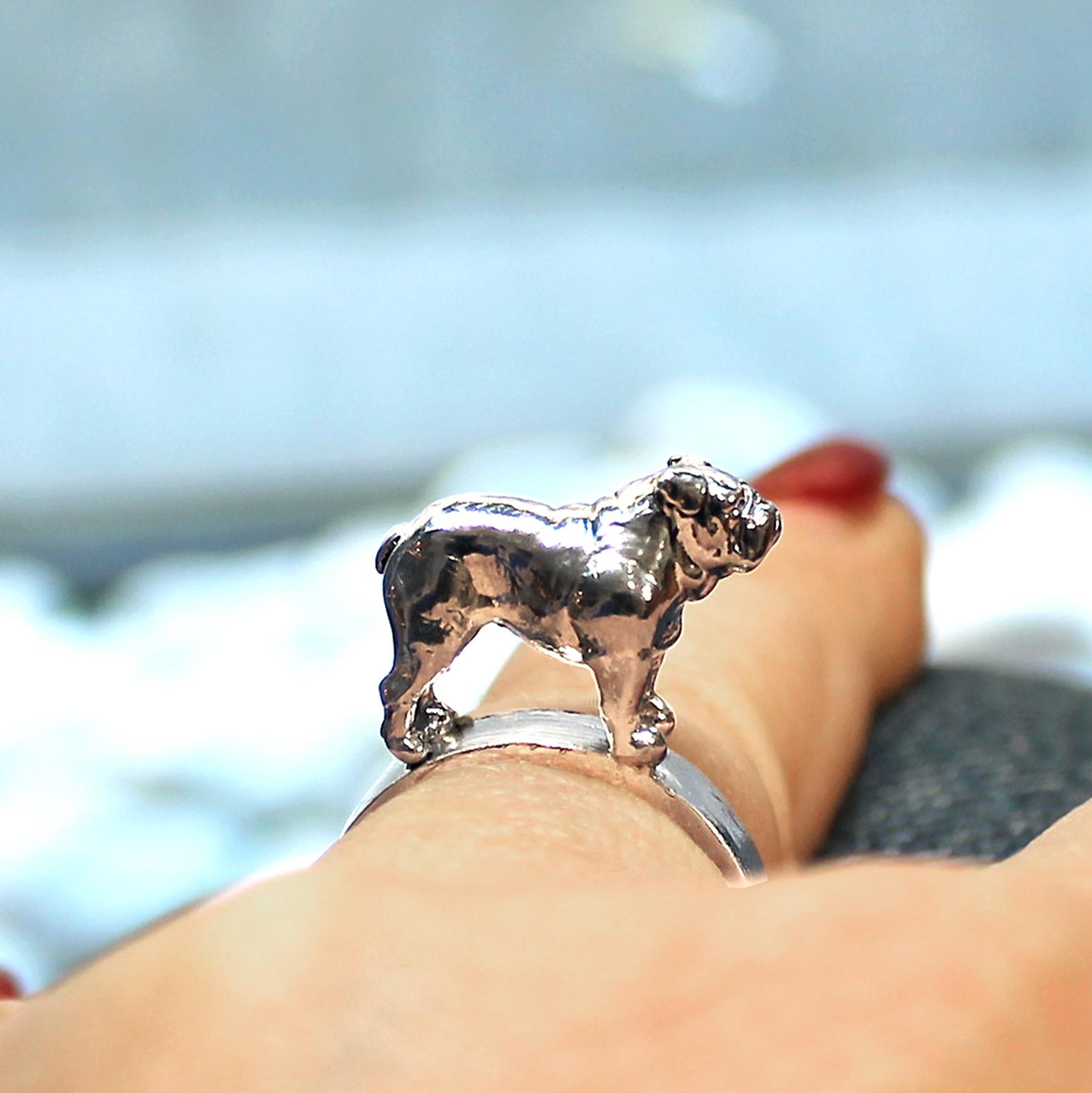 bulldog-inglese-anello